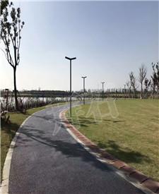 上海金山金水湖透水路面工程