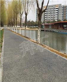 上海金山彩色透水混凝土项目