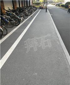 上海东华大学生态透水路面工程
