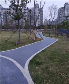 上海盘古公园透水路面项目