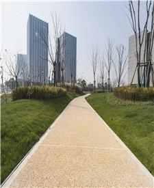 上海临港海洋科技广场露骨料透水路面项目