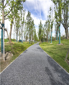 上海马桥露骨料透水混凝土项目