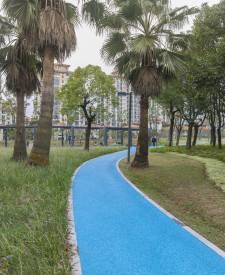 宁波姚江公园景观路面项目
