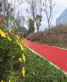 上海浦东张江海豚湾红色透水混凝土项目